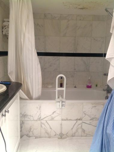 st pauls bathroom before